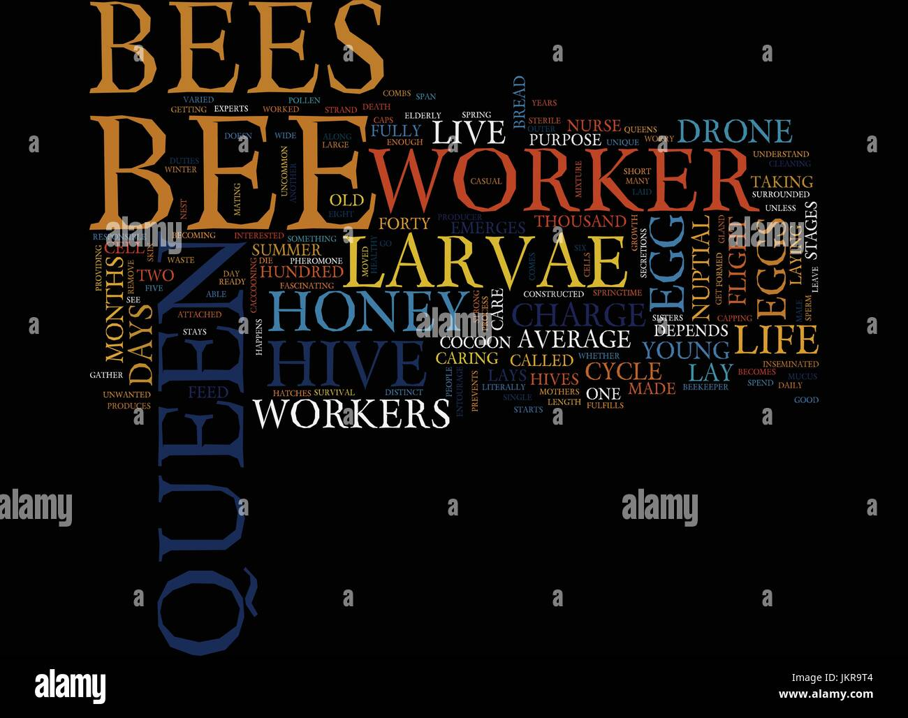 THE LIFE CYCLE OF THE HONEY BEE Text Background Word Cloud Concept - Stock Vector
