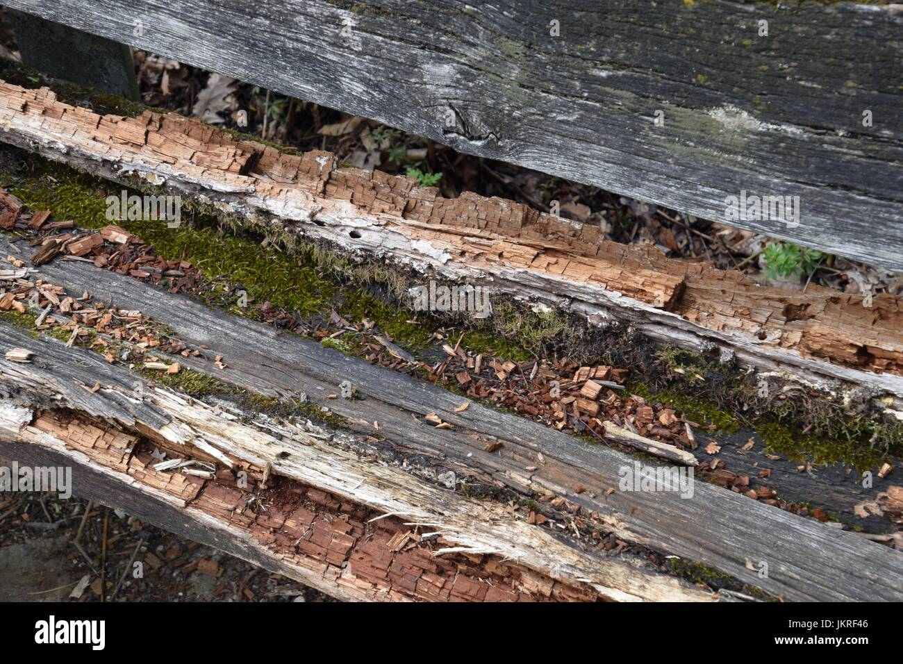 rotted Wooden bench - Stock Image