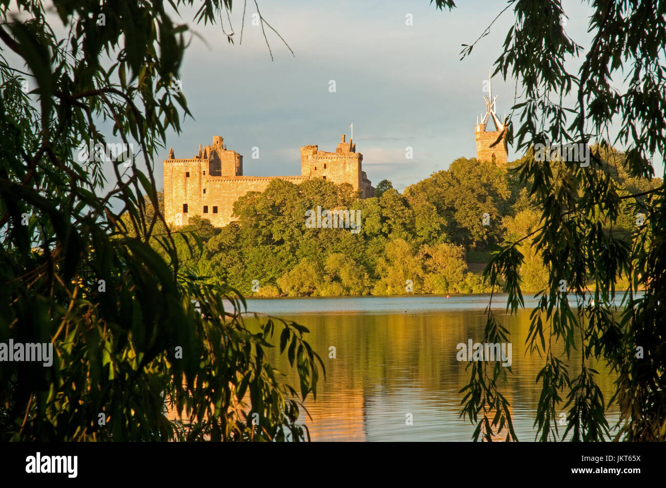 Linlithgow Palace framed by Weeping Willows Stock Photo