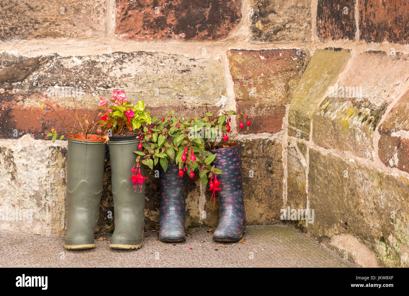 Pairs of wellingtons used as unusual plant pot containers outside old church, St Mary's Church, Haddington, East Stock Photo