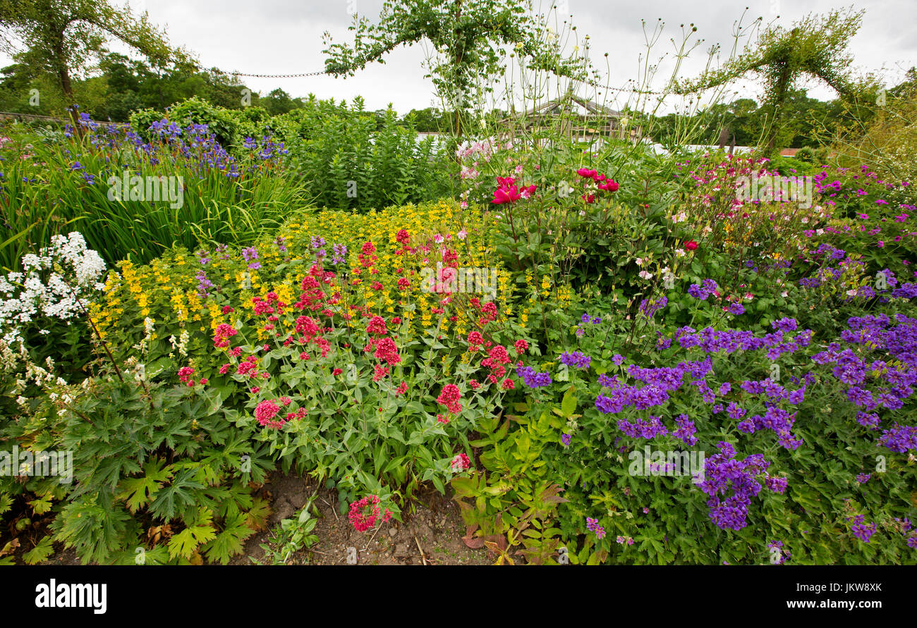 Cottage Garden In Britain With Colourful Display Of Flowers Red
