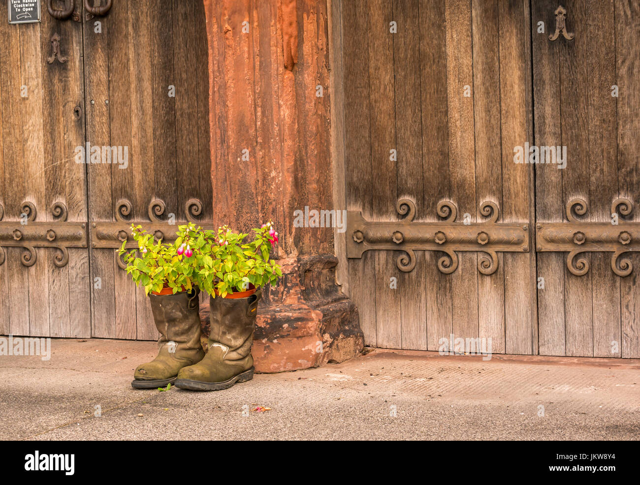 Men's old boots used as unusual plant pot containers outside old wooden church doors, St Mary's Church, Haddington, - Stock Image