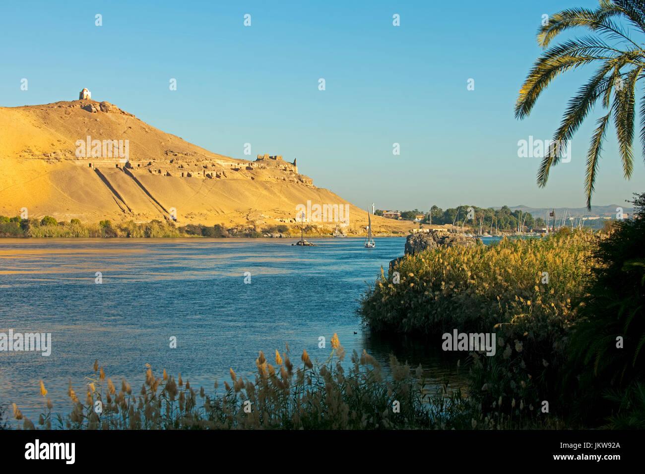 El Ali Stock Photos & El Ali Stock Images - Alamy