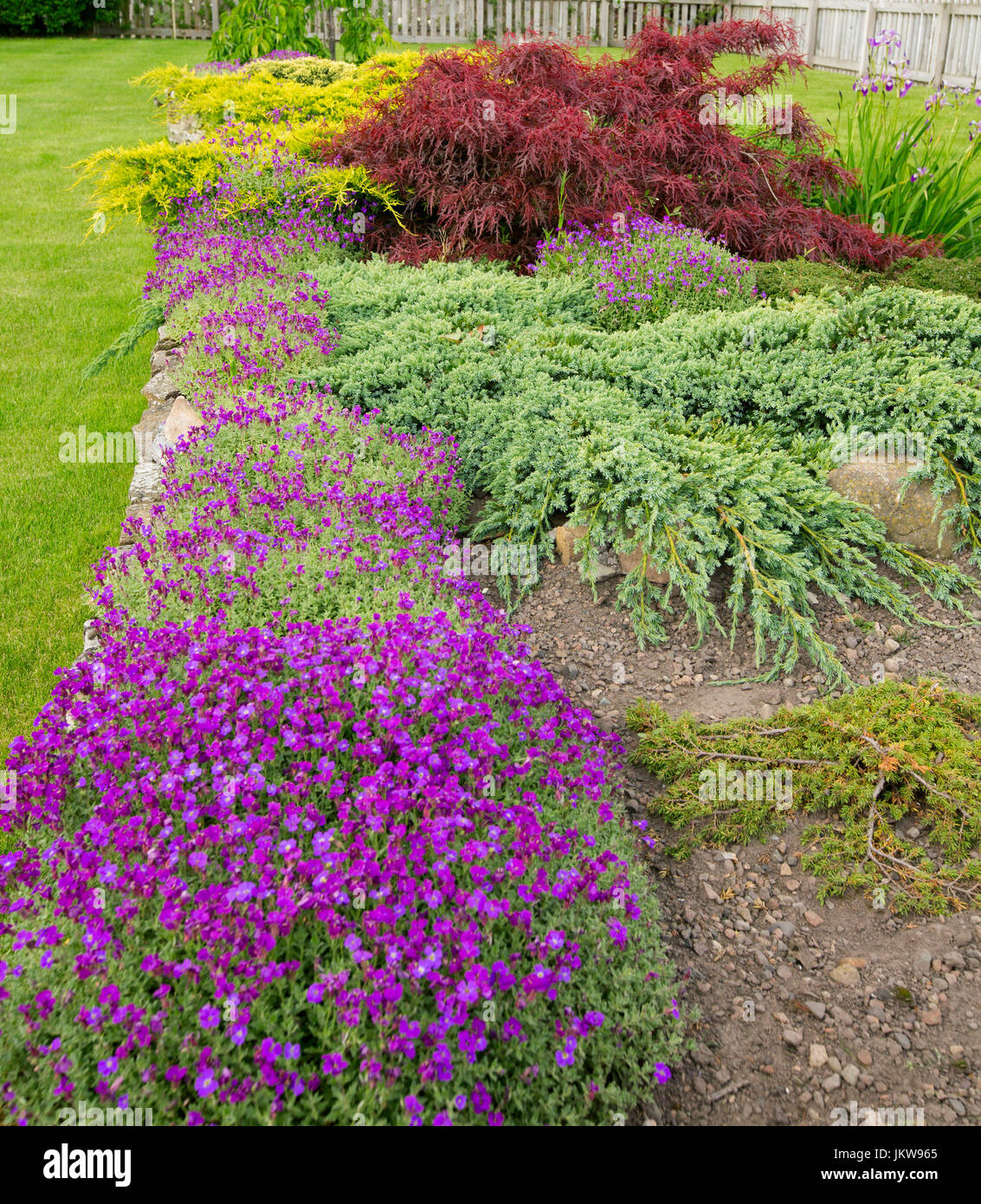 Cottage Garden In Britain With Low Ground Cover And