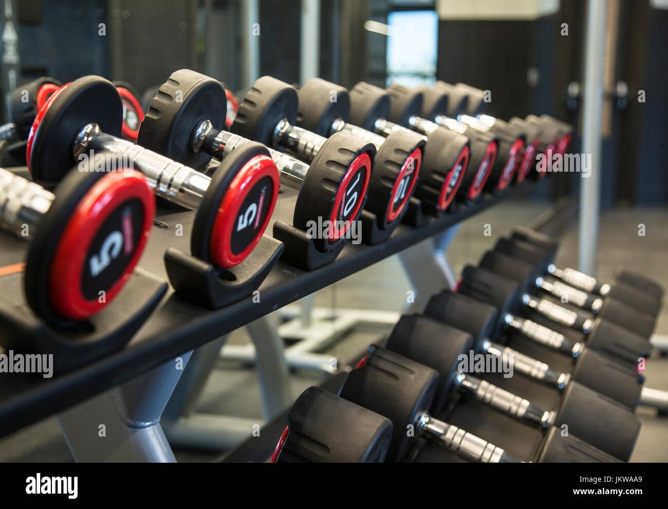Dumbbells on a rack - Stock Image