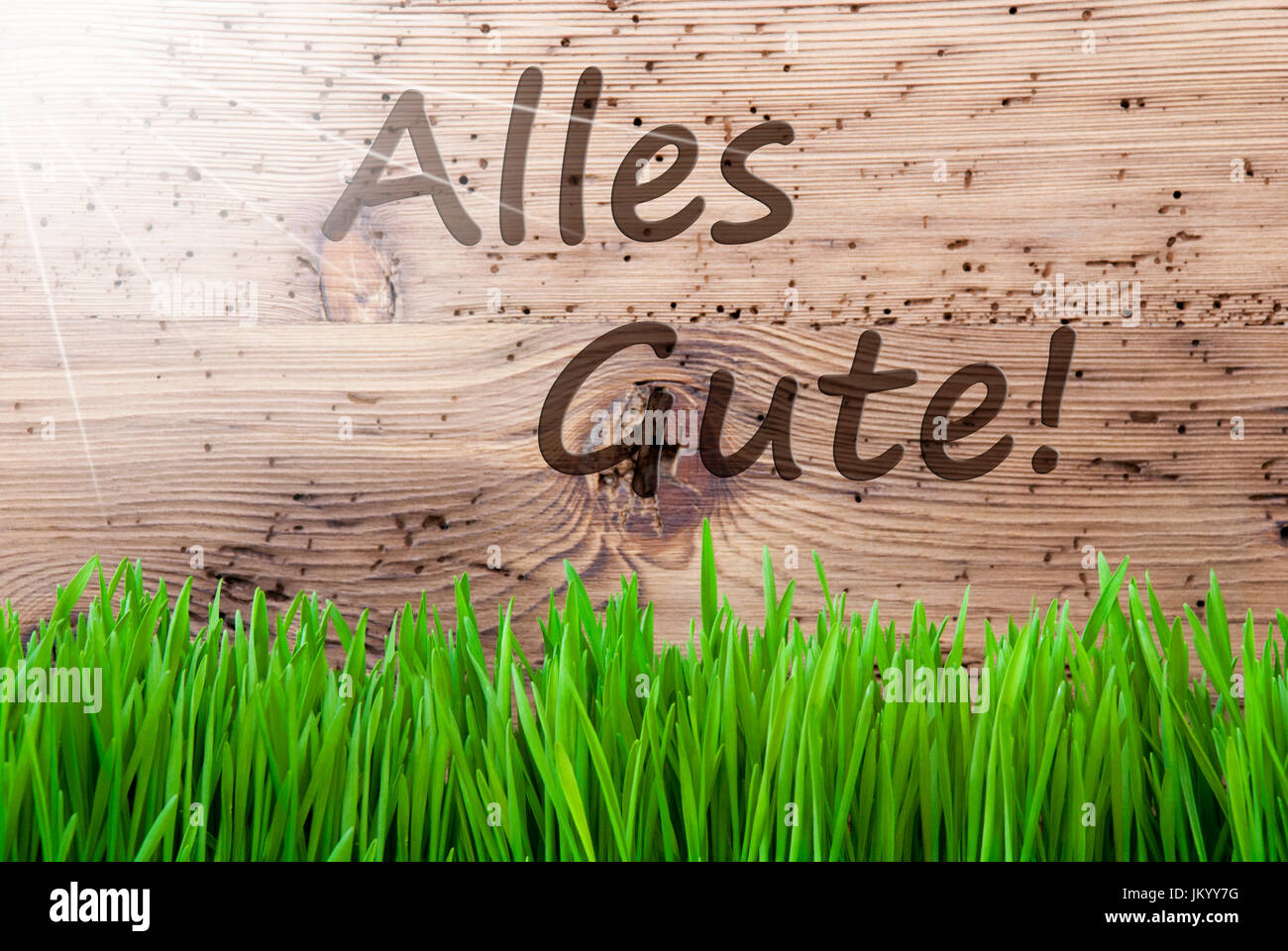 German Text Alles Gute Means Best Wishes Spring Season Greeting