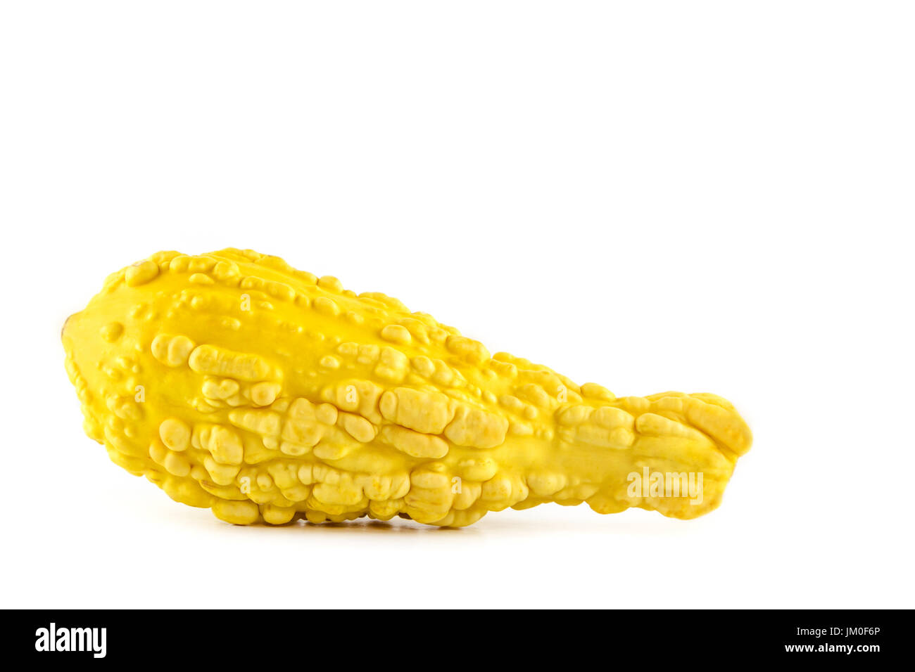 A single pumpkin (Yellow Crookneck) lies in front of a white background as a Cut-Outs - Stock Image