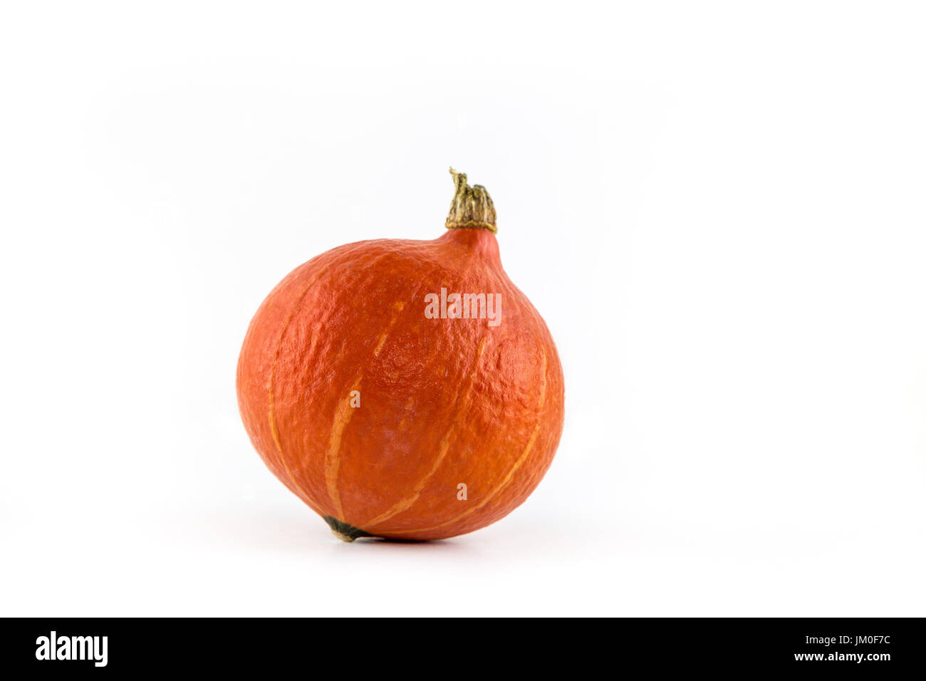 A single pumpkin (Hokkaido) lies in front of a white background as a Cut-Outs - Stock Image