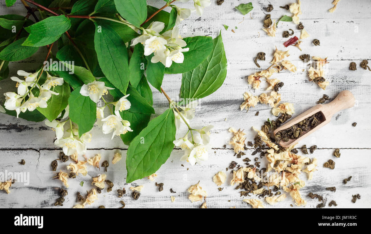 Scattered Dried Green Tea Leaves With Fresh Jasmine Flowers And Stock Photo Alamy