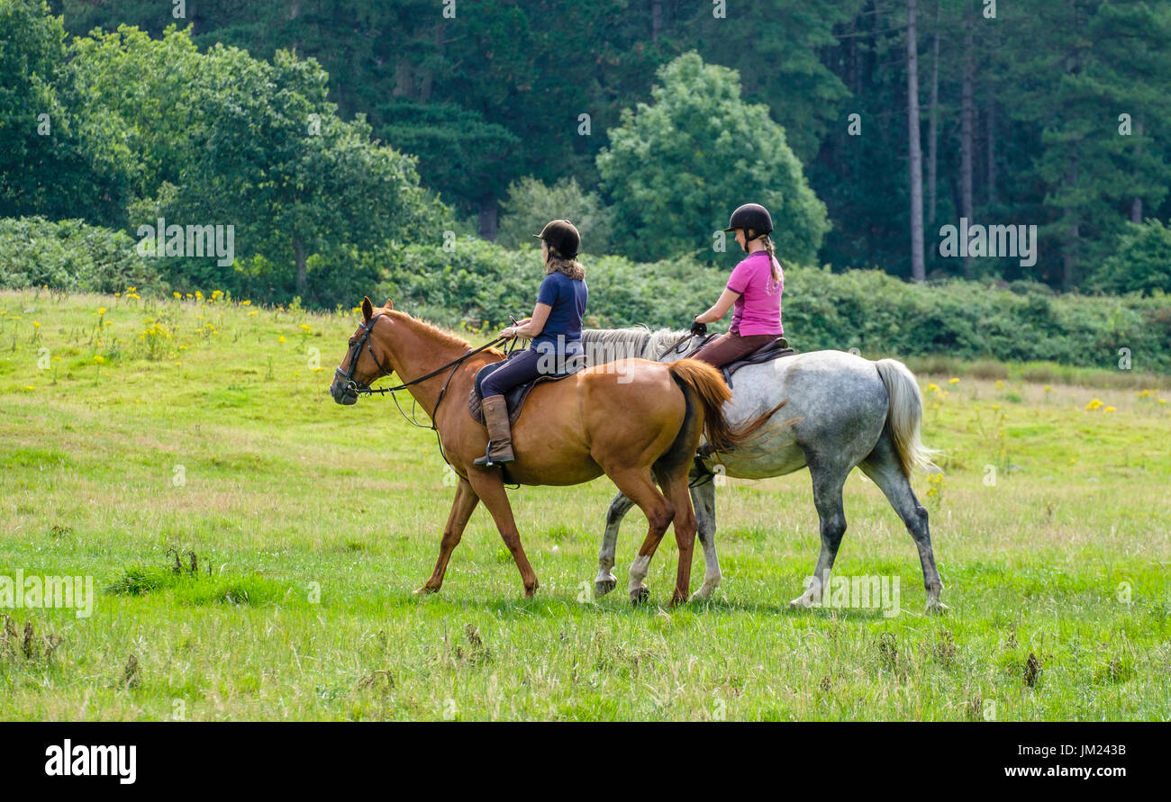 Two young ladies enjoy riding their horses in Wareham Forest, Dorset, England, UK. Stock Photo