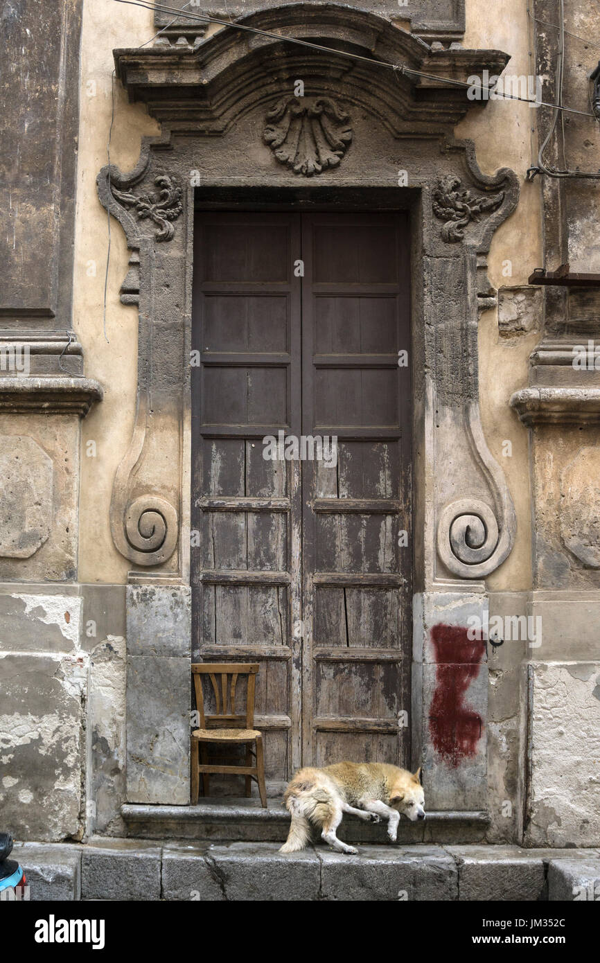 Sleeping dog in a Baroque church doorway, in the Via Porto Carini, Capo market, Central Palermo. Stock Photo