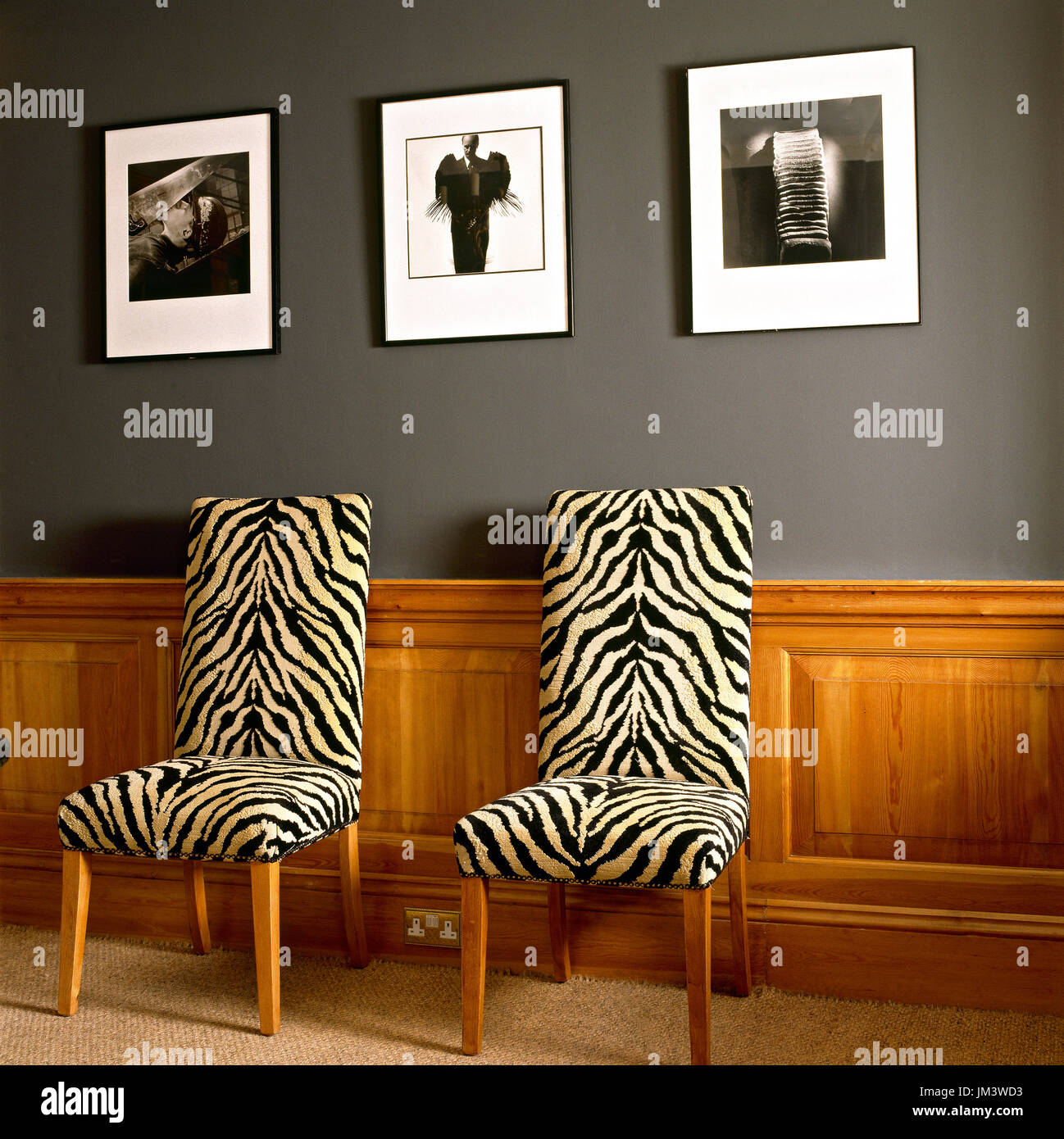 Zebra Print Chairs Below Hanging Photographs   Stock Image