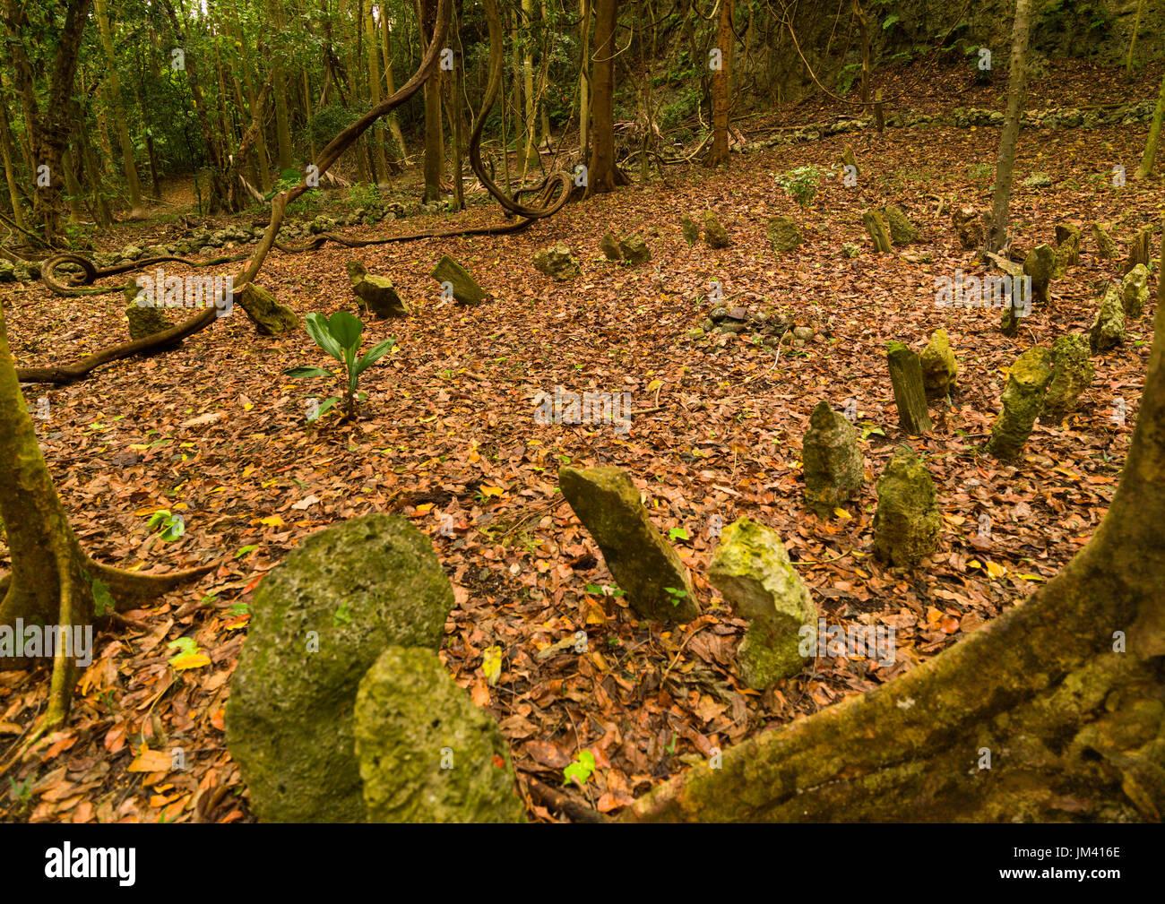 Amelbati site of former cannibal ceremonies, Malampa Province, Malekula Island, Vanuatu - Stock Image
