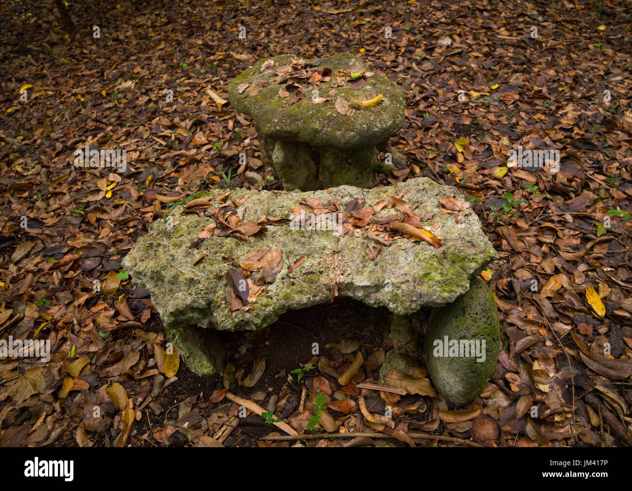 Sacrifice table in Amelbati cannibal site, Malampa Province, Malekula Island, Vanuatu - Stock Image