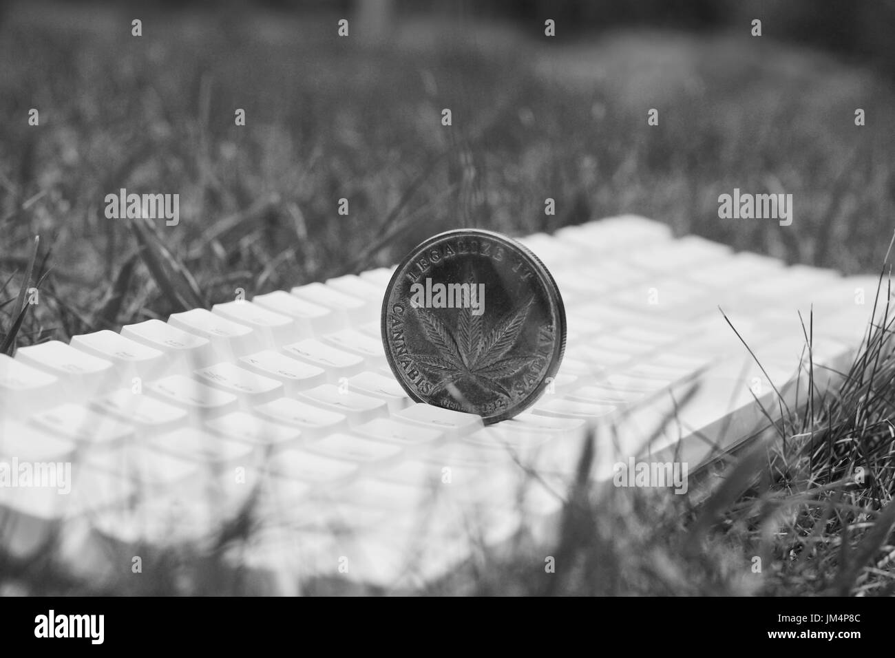 Marijuana black and white stock photos images alamy marijuana cannabis sativa coin on the white keyboard black and white scene stock biocorpaavc Images