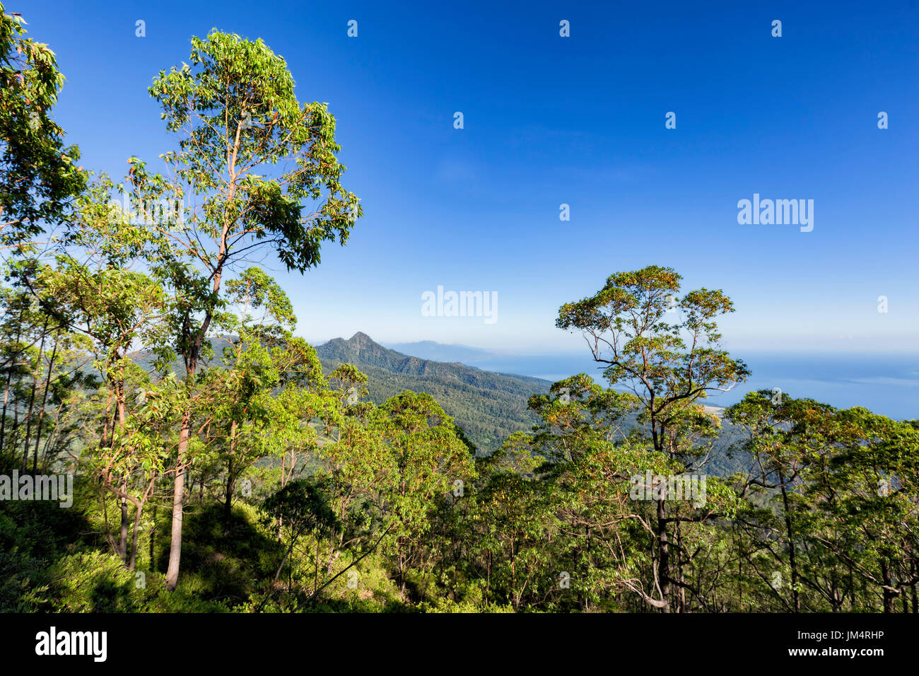 Morning view of towards the city of Maumere on the side of the stratovolcano, Mount Egon. - Stock Image