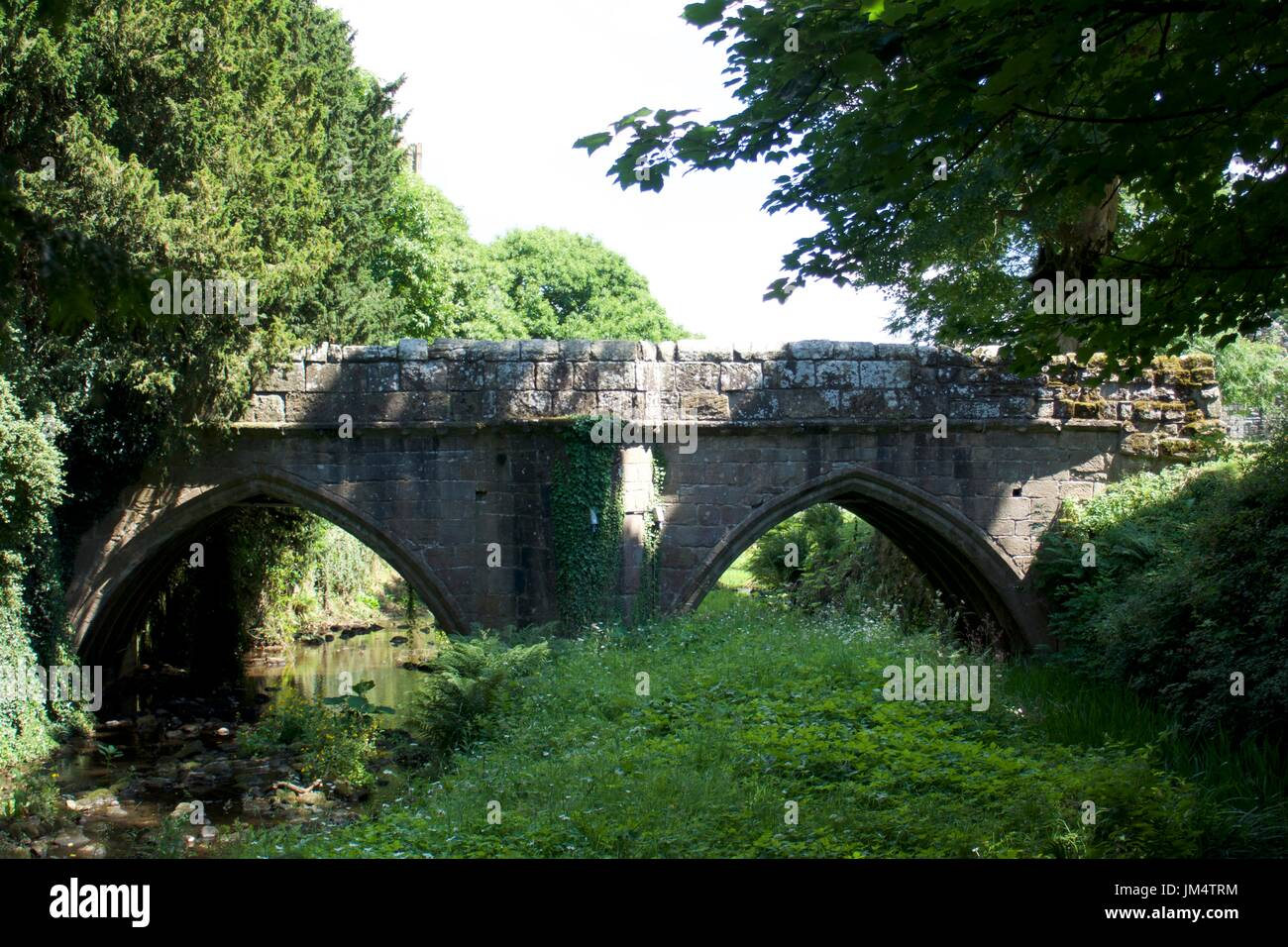 Arched stone bridge over river, Fountains Abbey, North Yorkshire, UK Stock Photo