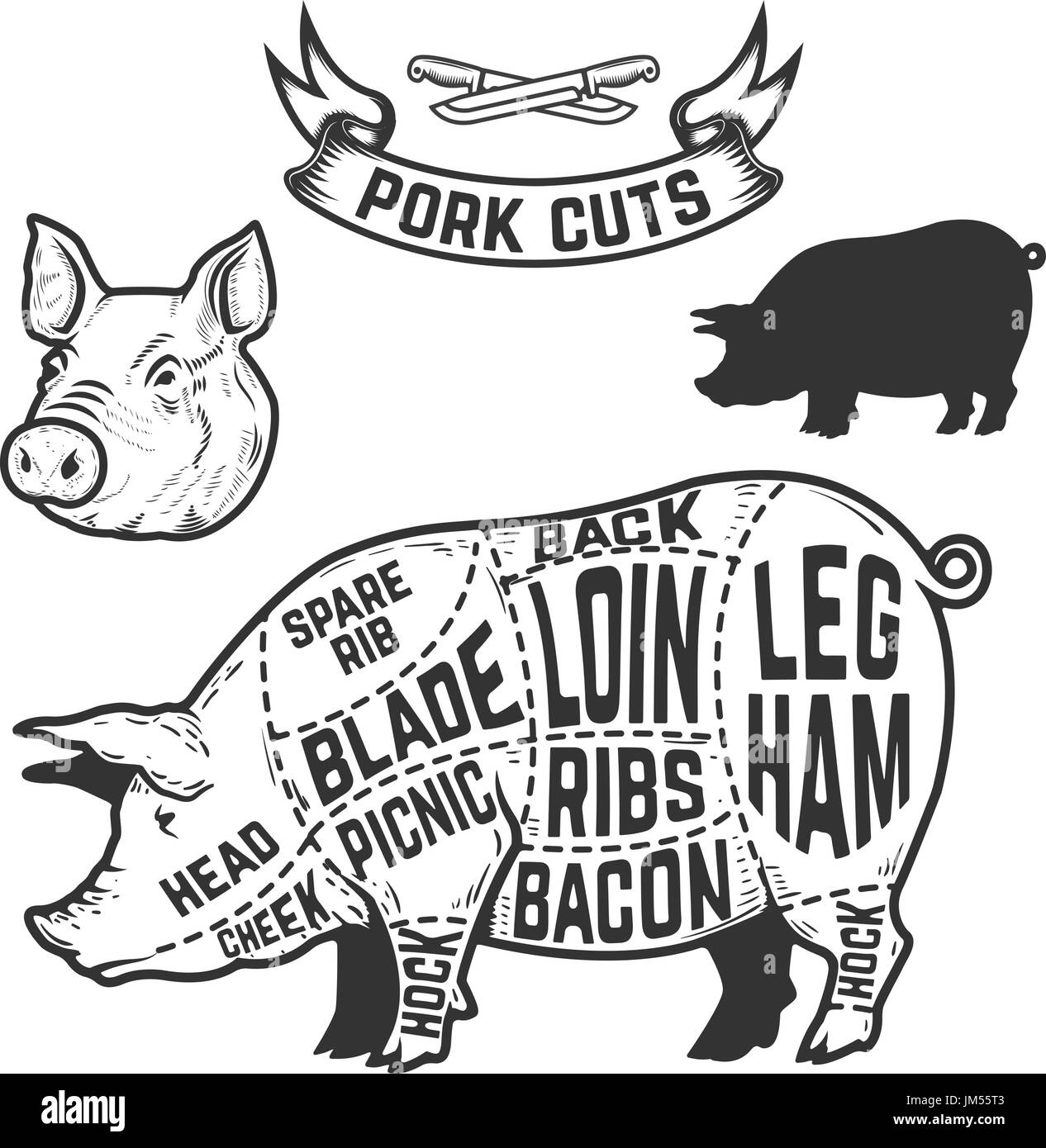 Cuts Of Beef Diagram Stock Photos Chicken Vector Pork Butcher Design Element For Poster Menu Illustration