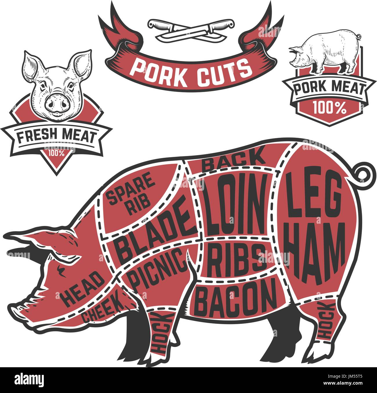 Pork cuts butcher diagram. Cow illustrations on white background ...
