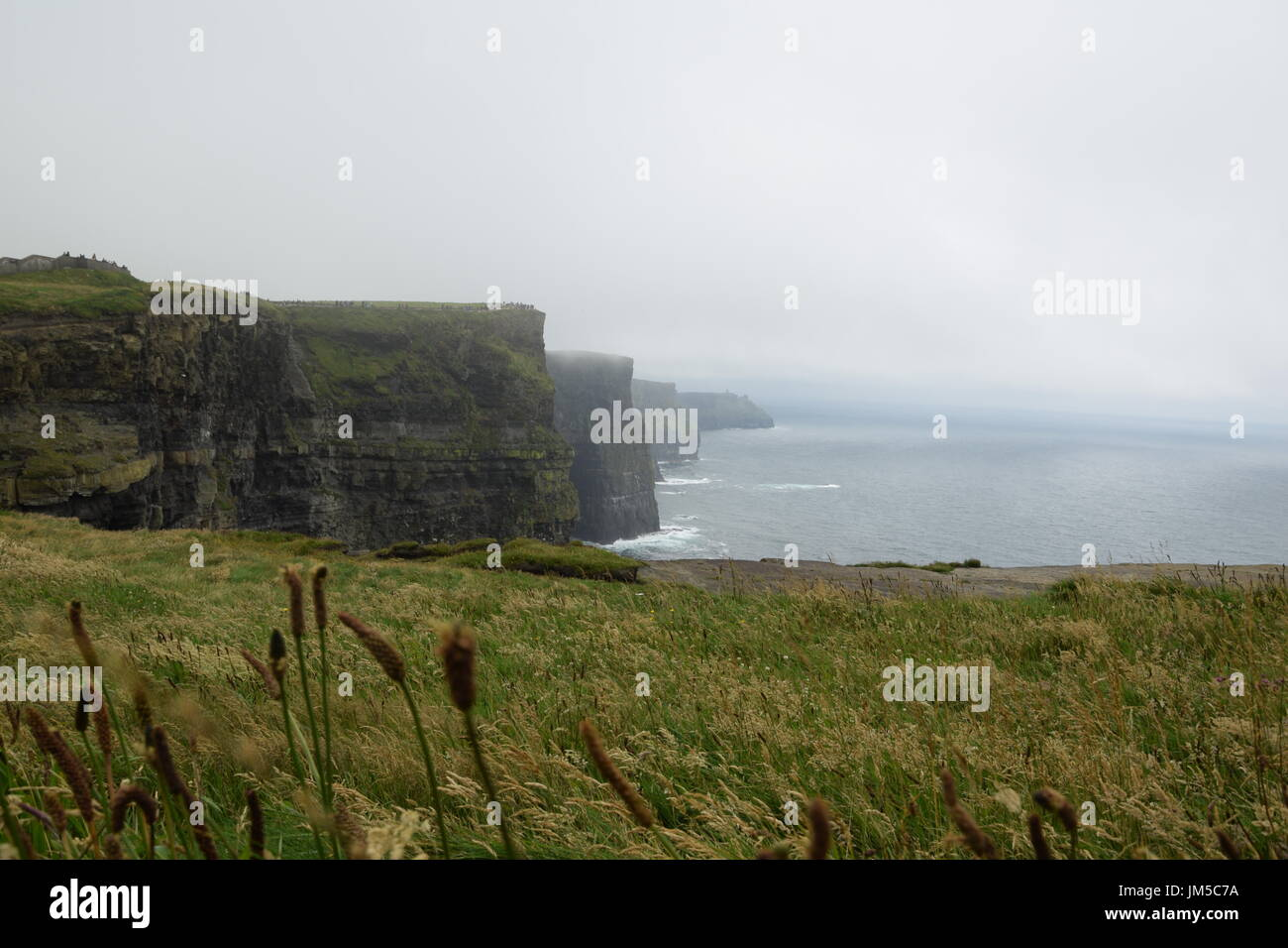 View of the Cliffs of Moher in the County Clare, west Ireland - Stock Image