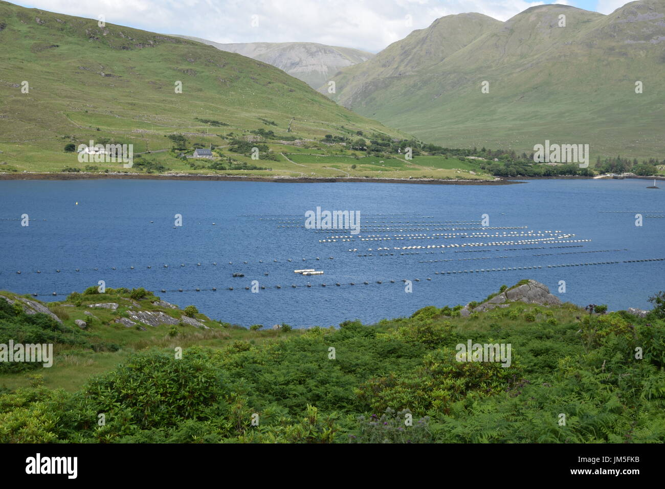 View of Killary Harbour and floats on mussel beds from the road N59 in the County Galway, Ireland - Stock Image