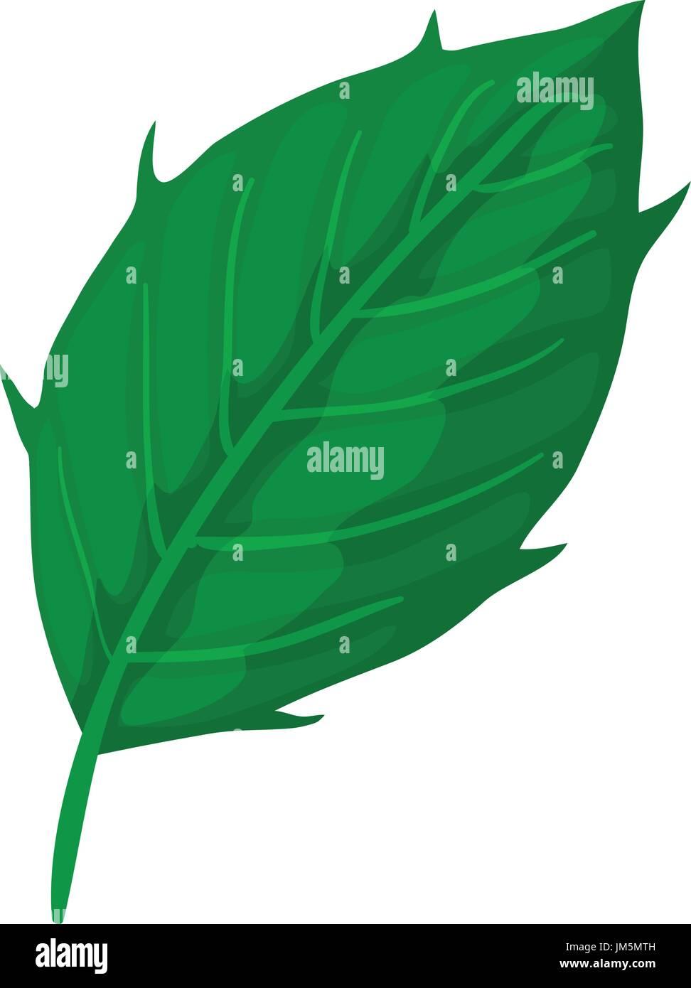 Thistle leaf icon, cartoon style - Stock Image