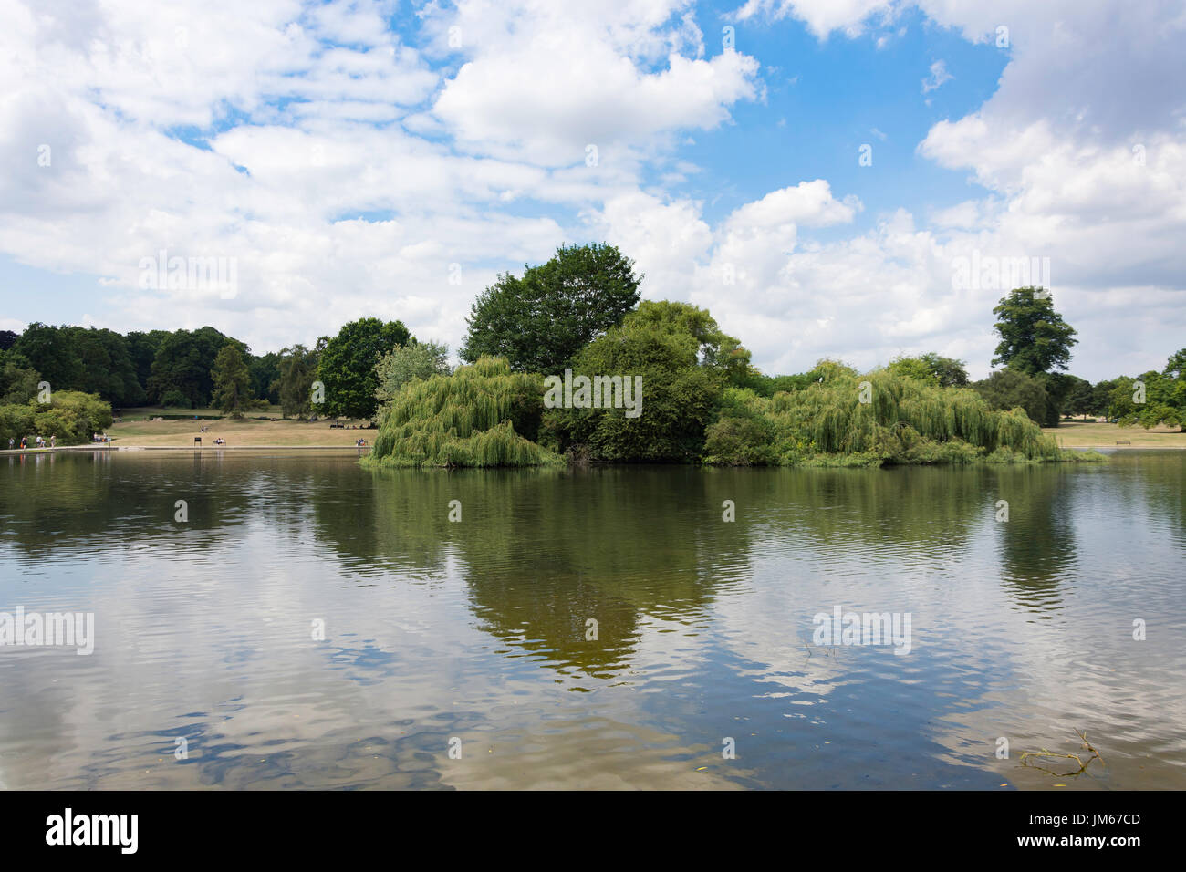 Lake and Heron Island in Verulamium Park, St.Albans, Hertfordshire, England, United Kingdom Stock Photo