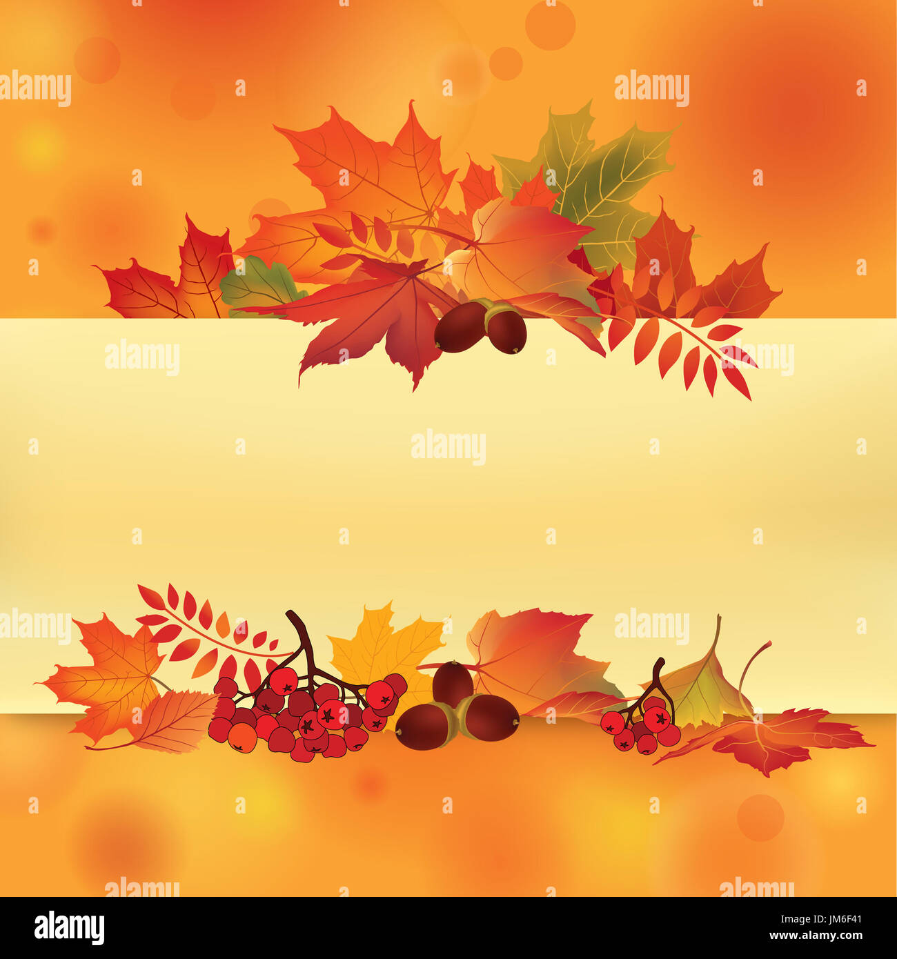 Autumn Frame Fall Leaves And Berries Nature Floral