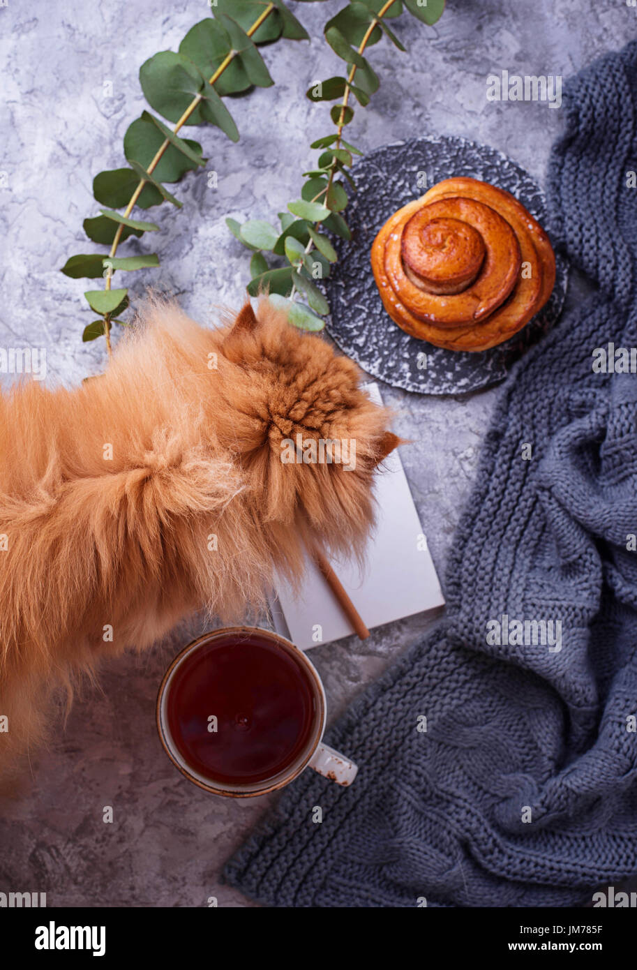 Feminine workspace with bun, cup of tea, notebook and red cat. Flat lay, top view - Stock Image