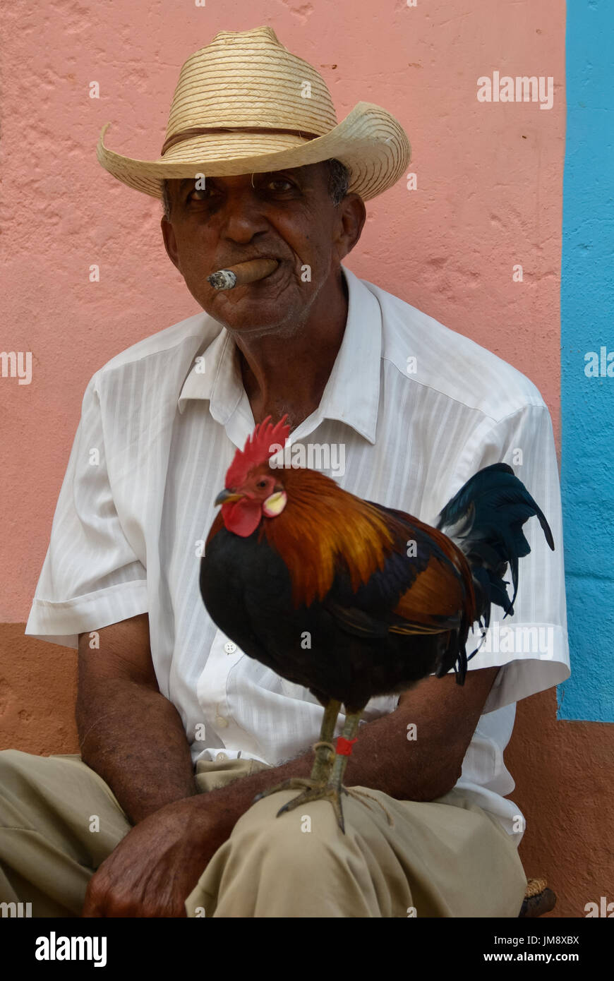 rooster man in love