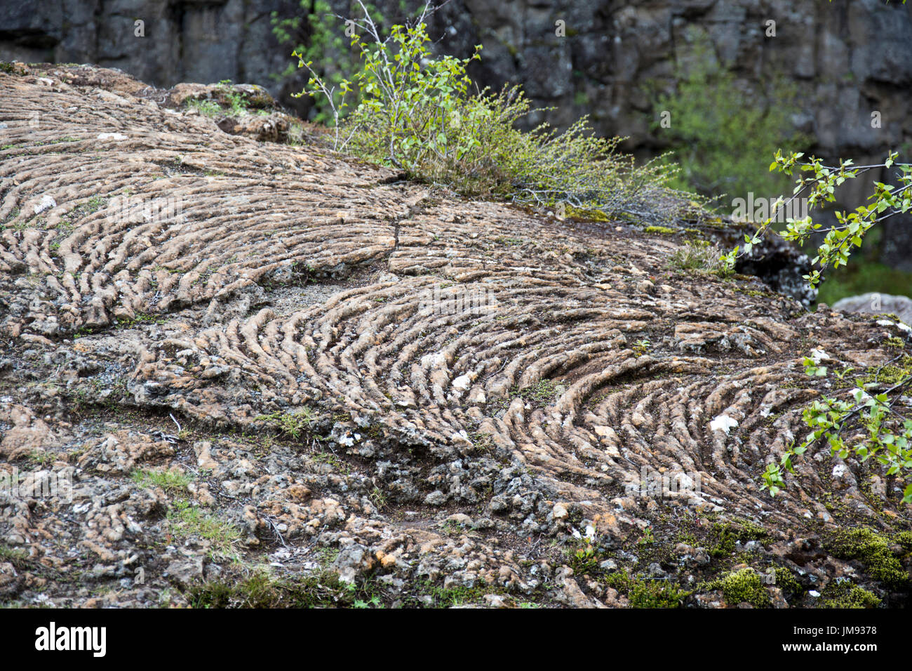 Solidified magma flow, Iceland - Stock Image