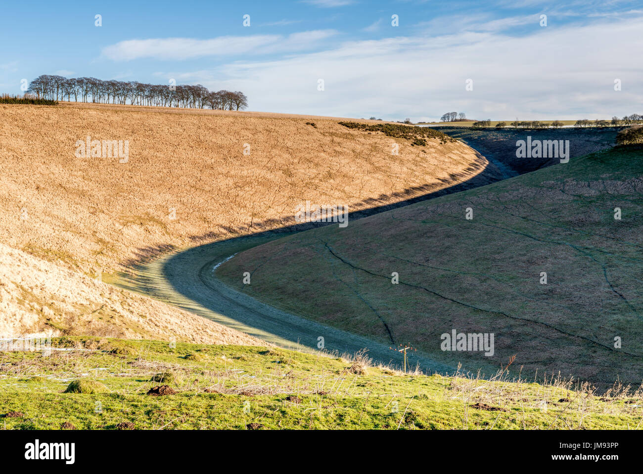 Fairy Dale on the Yorkshire Wolds - Stock Image