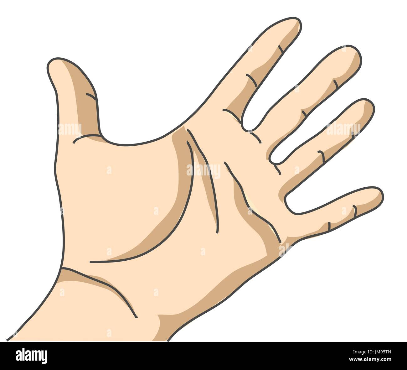 Palm hand isolate on white - Stock Vector