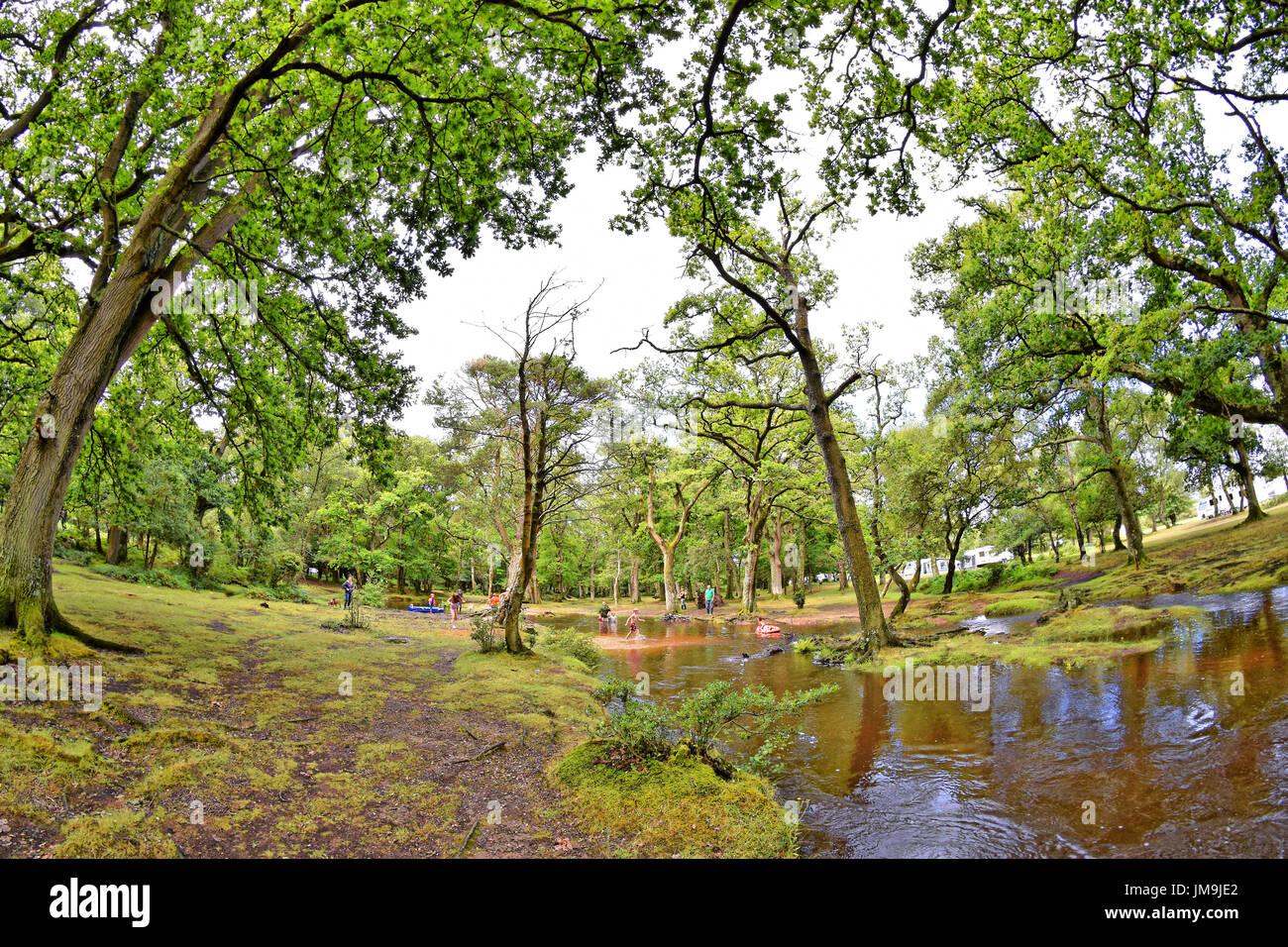 "Children playing in a New Forest stream ""Ober Water"" next to Aldridge Hill Caravan Park and Campsite near Brockenhurst, Stock Photo"