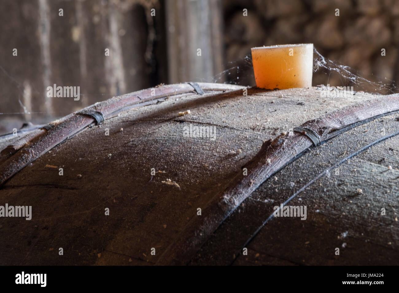 Close up of a maturing cognac barrel - Stock Image