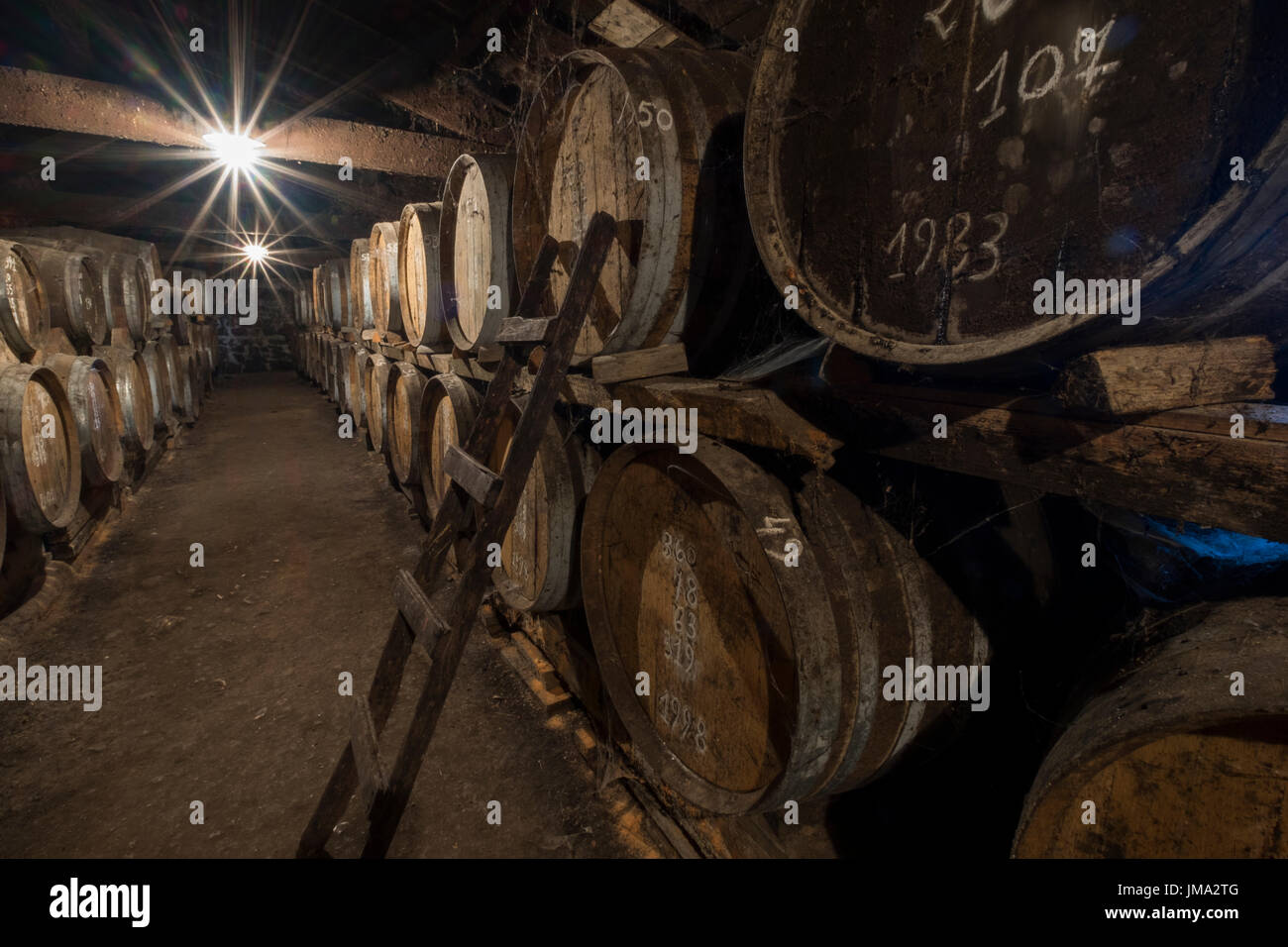 Cognac slowly maturing in the cellar - Stock Image