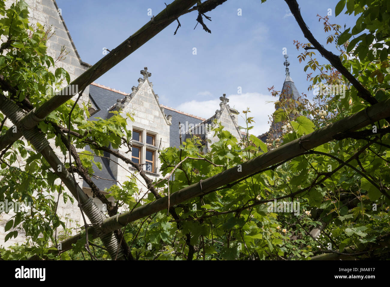 Chateau du Rivau et ses Jardins de Contes des Fees, Loire Valley Stock Photo