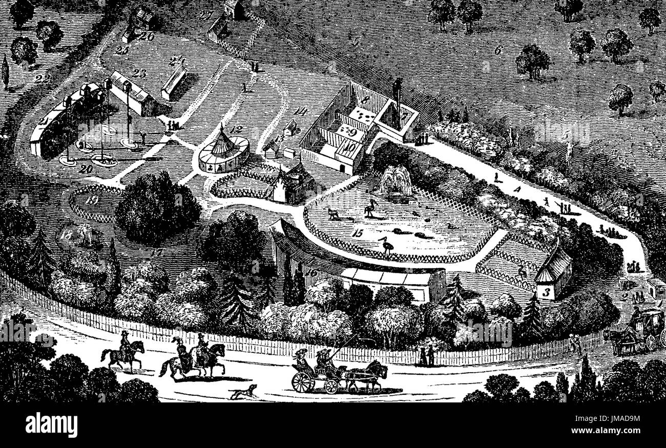 REGENT'S PARK ZOO about 1830 - Stock Image