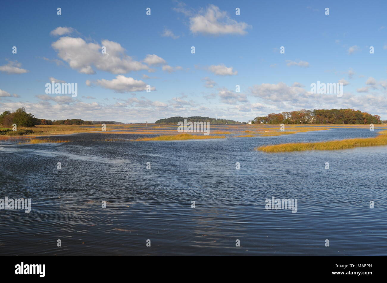 Hog Island Stock Photo