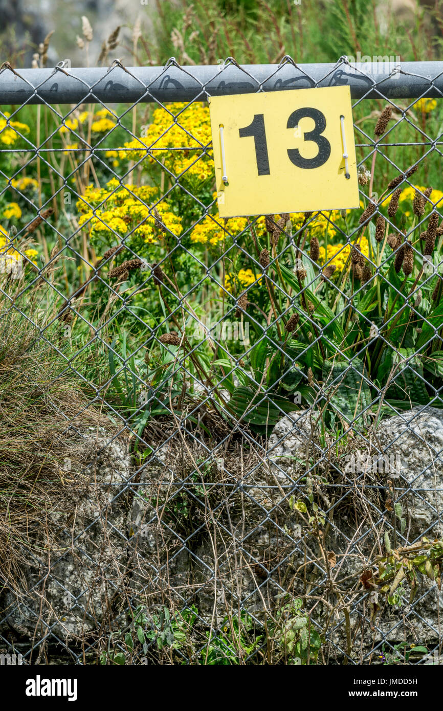 Yellow Number 13 sign - a number unlucky for some, and also a Baker's Dozen. Odd number. - Stock Image