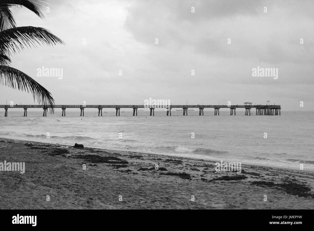 Ocean Pier - Stock Image