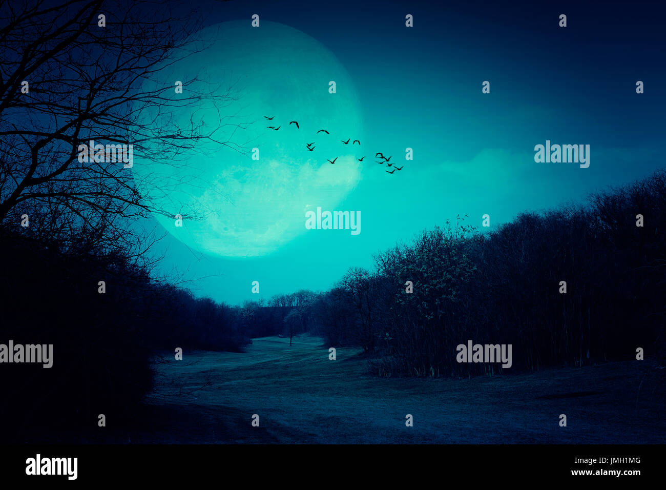Spooky full moon and dark forest - Stock Image