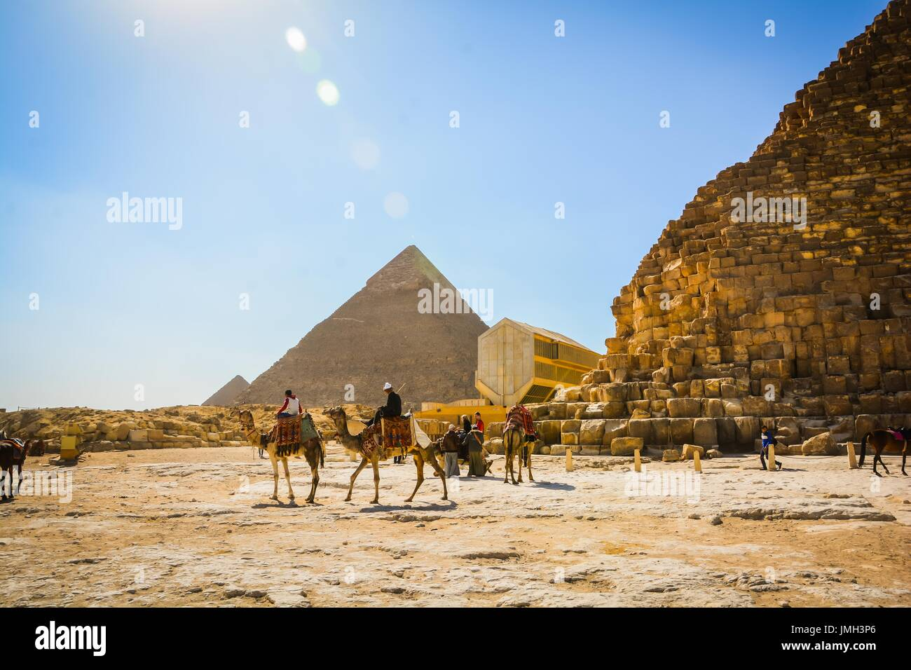 Riding camels near the pyramids - Stock Image