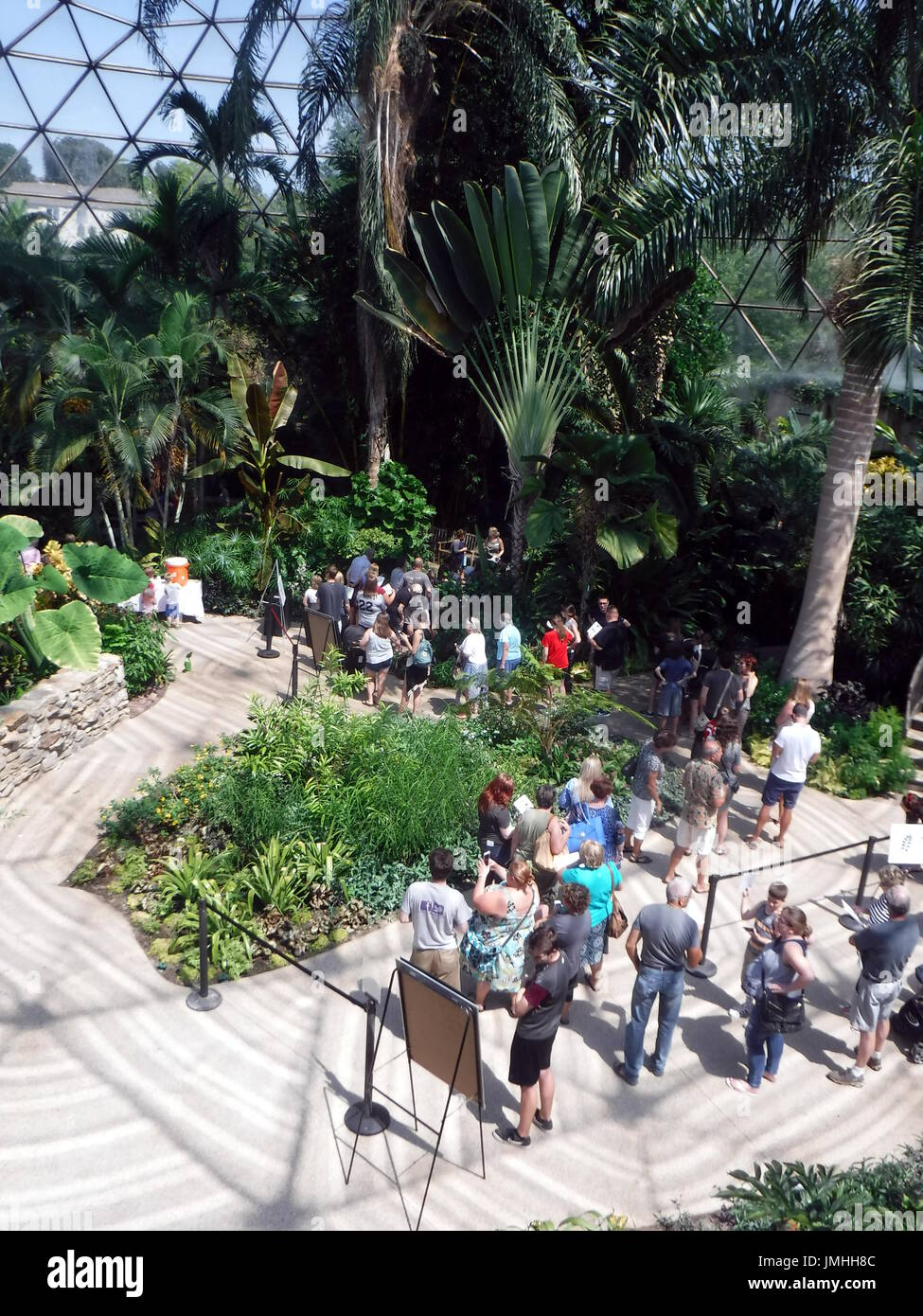 people line up in the greater des moines botanical garden to view the titan arum plant - Greater Des Moines Botanical Garden