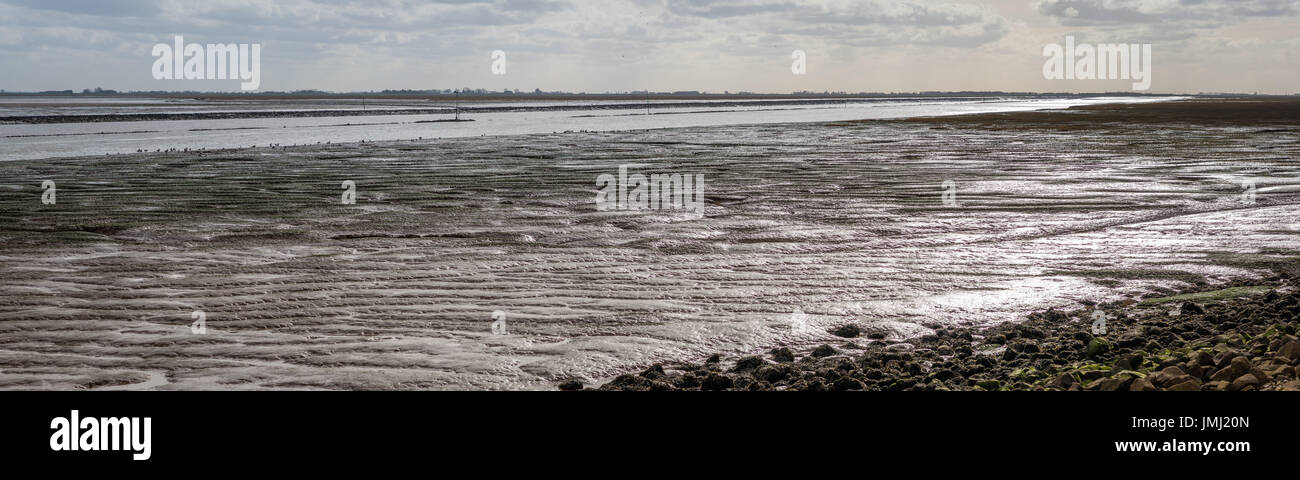 The coastal lowlands of England provide some of the largest natural salt marshes in the UK. Mudflats on The Wash Stock Photo