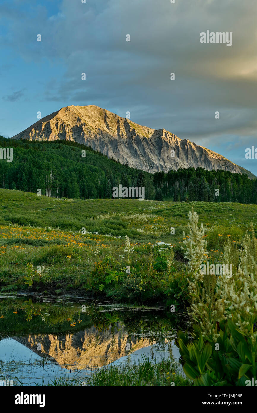 Gothic Mountain (12,631 ft.) reflected on pond, Gunnison National Forest, near Crested Butte, Colorado USA - Stock Image