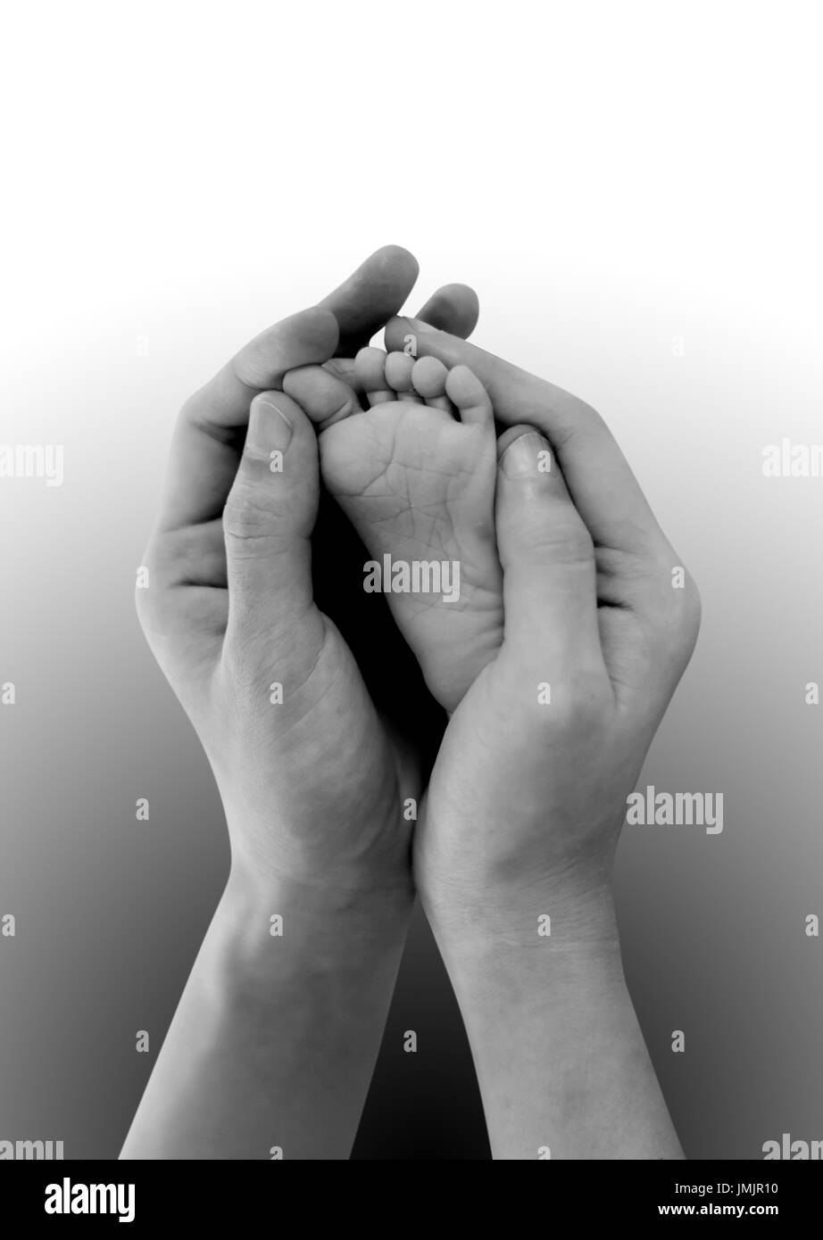 Baby's feet in mothers hands on black and white. Isolated on white background with copy space - Stock Image