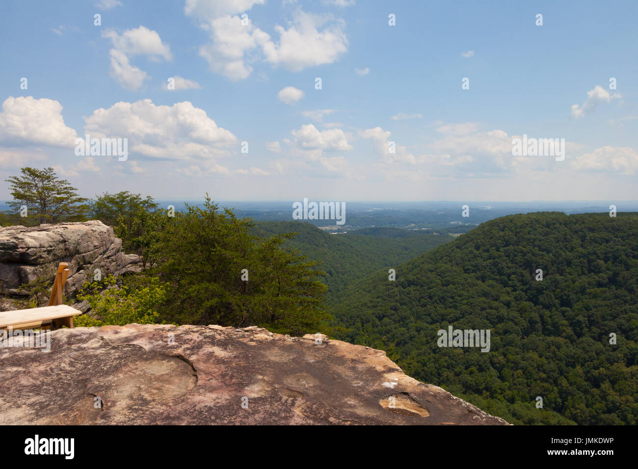 Laurel-Snow State Natural Area at Buzzard Point Overlook - Stock Image