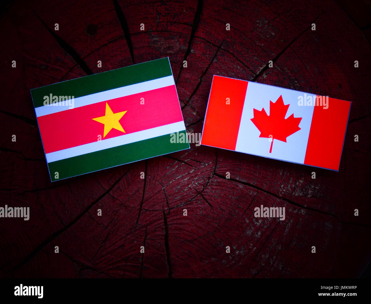 Suriname flag with Canadian flag on a tree stump isolated - Stock Image