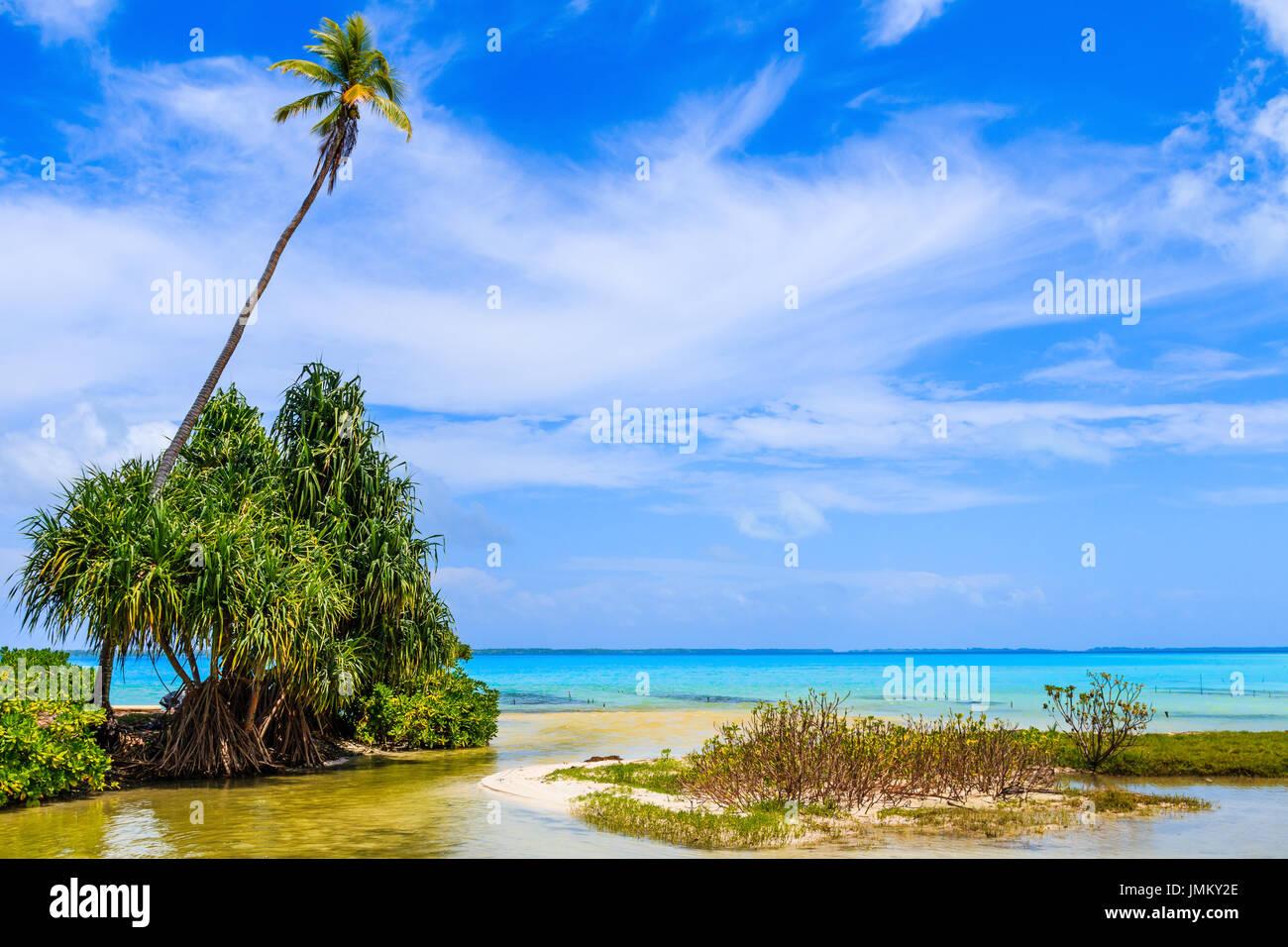 Tabuaeran, Fanning Island, Republic of Kiribati.Tabuaeran beach on the Fanning Island, Republic of Kiribati - Stock Image